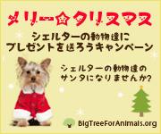 メリー☆クリスマス!動物愛護団体や保健所の動物達に愛をプレゼントしよう〜!
