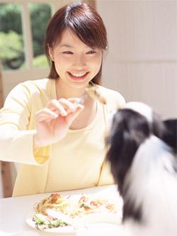 テーブルと女性と犬