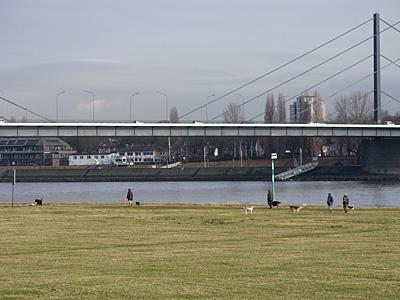 デュッセルドルフ市内のライン川沿い