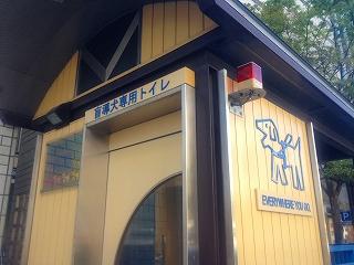 福岡天神にある盲導犬専用トイレ