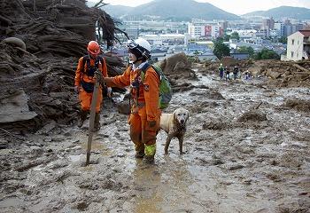 広島大規模土砂災害の災害救助犬