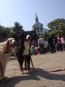 ペットと長崎旅行