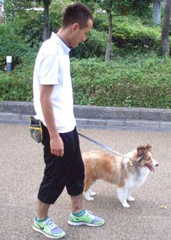 散歩トレーニング1