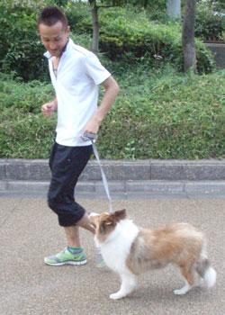 散歩トレーニング8-1